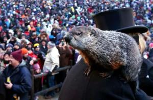 groundhog-day-NG